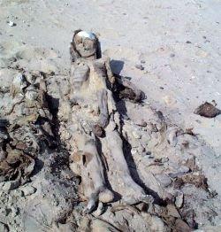 Истребители термитов нашли мумии монахинь