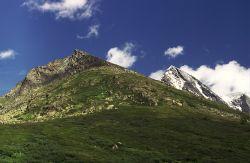 Алтайский пастух может потребовать компенсации от Роскосмоса