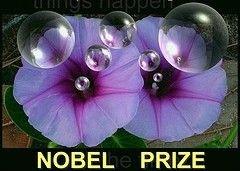 На Нобелевскую премию мира в 2008 г. номинированы 197 человек и организаций