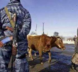 Автомобиль с сотрудниками ФСБ взлетел на воздух в Ингушетии