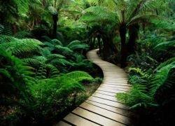 Лучшие американские отели для эко-туризма