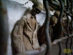 Капуцинские катакомбы – музей мертвых (фото)