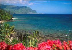 Гавайи - острова орхидей