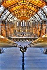 Лондон признан мировым рекордсменом по количеству музеев