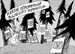 Чем отличаются президентские гонки в России и США
