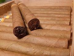 Организаторы аукциона сигар выручили миллион евро