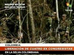 Колумбийцы обвинили президента Эквадора в сотрудничестве с FARC