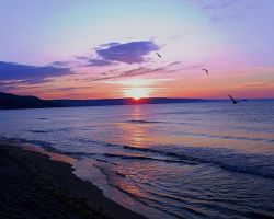 В Черном море нашли многокилометровое пятно мазута