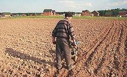 """Обратная сторона лозунга \""""Земля – крестьянам!\"""". 99% крестьян не распорядились своей землей"""