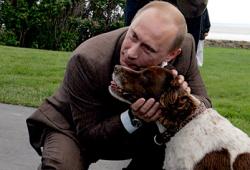 Авторитет Владимира Путина позволяет ему выставить на выборы хоть русскую борзую и добиться ее избрания
