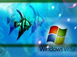 Стив Баллмер защищает Windows Vista