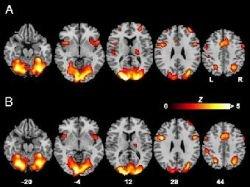 Ученые подтвердили влияние языка на восприятие цвета