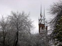 Минувшая зима в Германии стала одной из самых мягких за всю историю регулярных наблюдений погоды