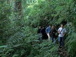 Центральная Америка – Мекка экотуристов