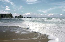 Черное море: загорать можно, купаться - нет