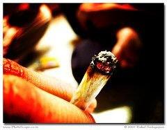 Данные о сроке жизни легких помогают бросить курить
