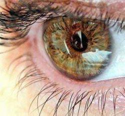 Немецкие врачи разработали протез-имплантант для человеческого глаза