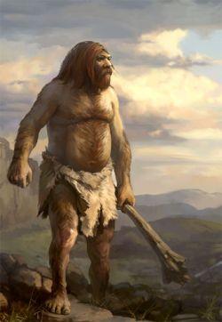 Британские археологи-любители обнаружили древние орудия охоты неандертальцев