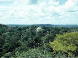 Гватемальские фермеры взяли в заложники туристов из Бельгии