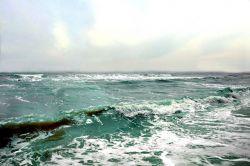 В Азовском море найдены тела моряков с затонувшего болгарского судна