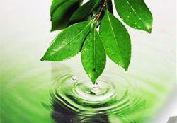 Чистая экология не способна обеспечить долголетие