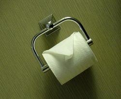 В Чехии построят город из туалетной бумаги