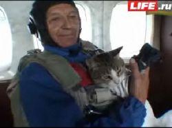 Первый кот-парашютист (видео)