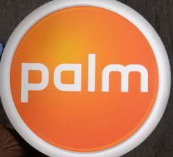 Компания Palm несет убытки