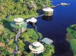 Самый большой в мире отель на дереве