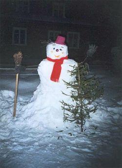 Нацболов задержали за оскорбление снеговика