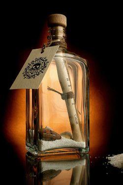 Бутылка с посланием, брошенная в океан 21 год назад, вернулась к отправителю