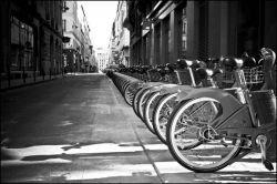 """В Германии \""""зеленые\"""" пытаются пересадить депутатов на велосипеды"""