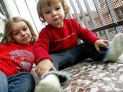 Генетики раскрыли секрет генетических заболеваний