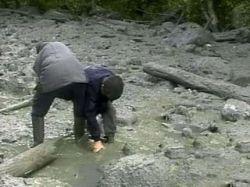 Найденные в Кармадонском ущелье останки могут принадлежать Сергею Бодрову