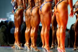 Подборка женщин-бодибилдеров (фото)
