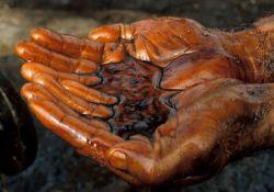 Государство вдвое увеличивает затраты на геологоразведку нефти и газа