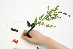 Японские авторучки из цветов (фото)