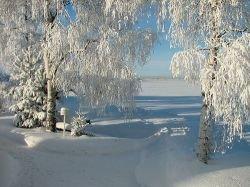 Финляндия принимает все больше туристов из России