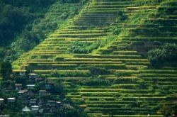 Банауэ – одна из главных достопримечательностей Филиппин (фото)
