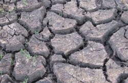Глобальное потепление может привести к переселению 130 млн человек