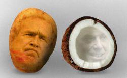 """Мировых лидеров оценили на вкус: Джордж Буш \""""похож на сморщенную картофелину\"""""""