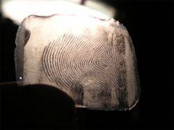Хакеры опубликовали отпечаток пальца главы МВД Германии