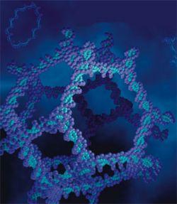 Удалось заглянуть вглубь молекул живого организма