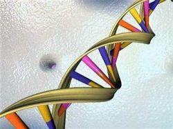 Ученые засомневались в этичности изучения генома человека