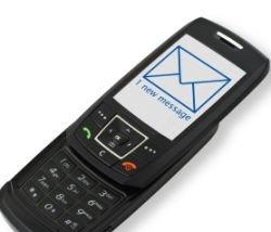 Египтянка приговорена к году тюрьмы за нецензурные SMS-ки