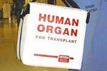 Четырем пациентам пересадили злокачественную опухоль вместе с органами