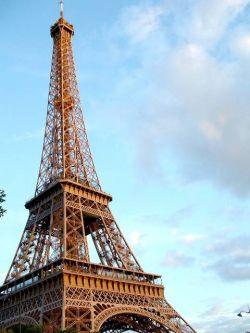Франция определила, кем могут работать иностранцы