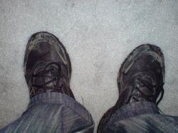 У тех, кто любит носить кроссовки, нашли задатки прирожденных лидеров