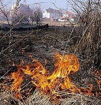 Природные пожары в ряде областей могут угрожать Москве дымовым облаком