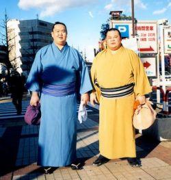 Борцы сумо стали моделями? (фото)